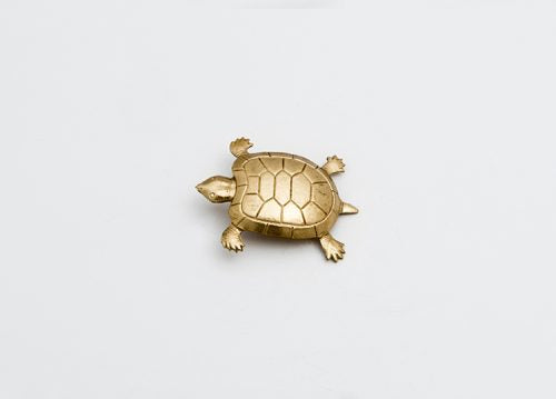 Broches tortugas
