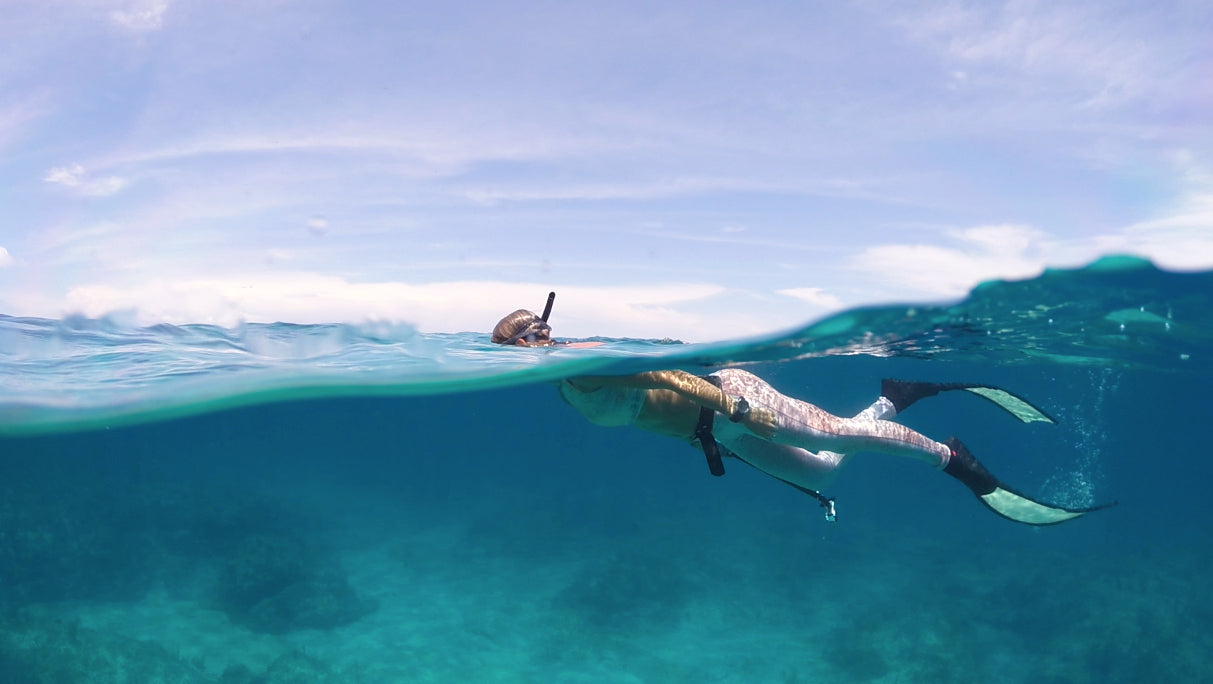 Check out our Freediving Adventures