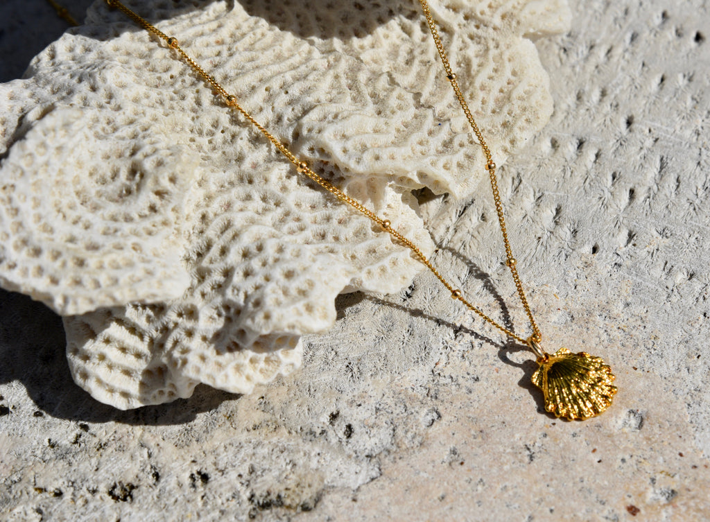 Scallop Sea Shell Necklace