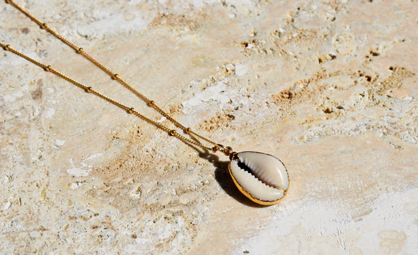 White Cowrie Sea Shell Necklace 24k