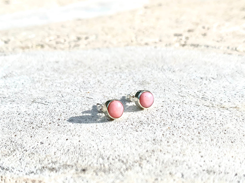 Pink Conch Sea Shell Studs