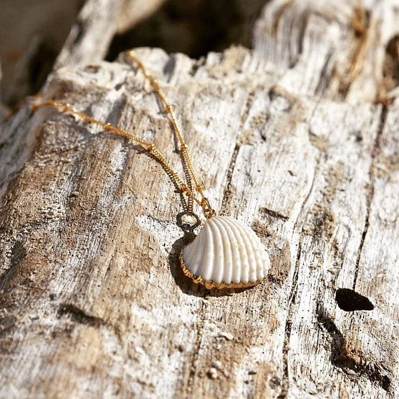 Ark Sea Shell Necklace