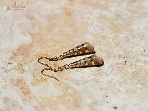Golden Turret Sea Shell earrings