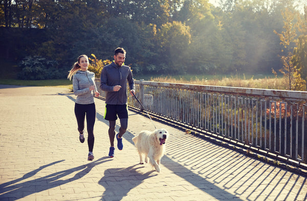 Couple jogging outdoors with their dog