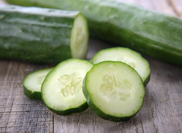 can dogs eat cucumber: cucumbers