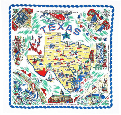Texas State Retro Dish Towel