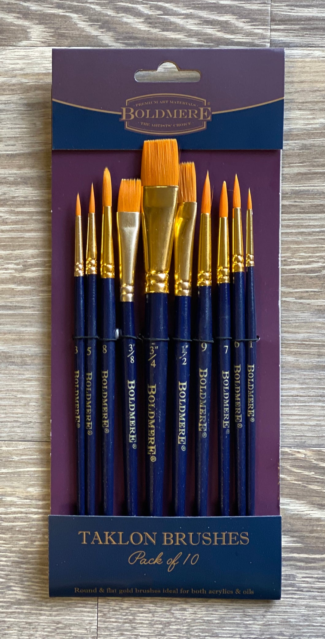 Set of 10 Taklon Artist Brushes