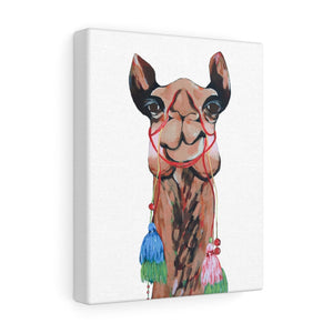 Sienna the Camel on Canvas Gallery Wrap