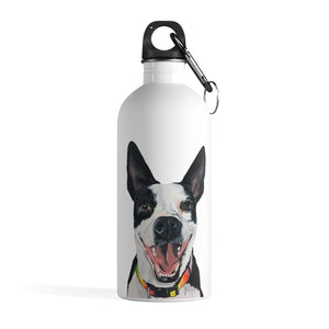 Walker Stainless Steel Water Bottle