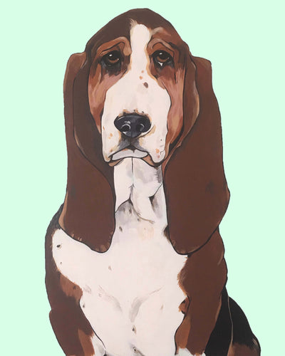 Buster the Basset Hound