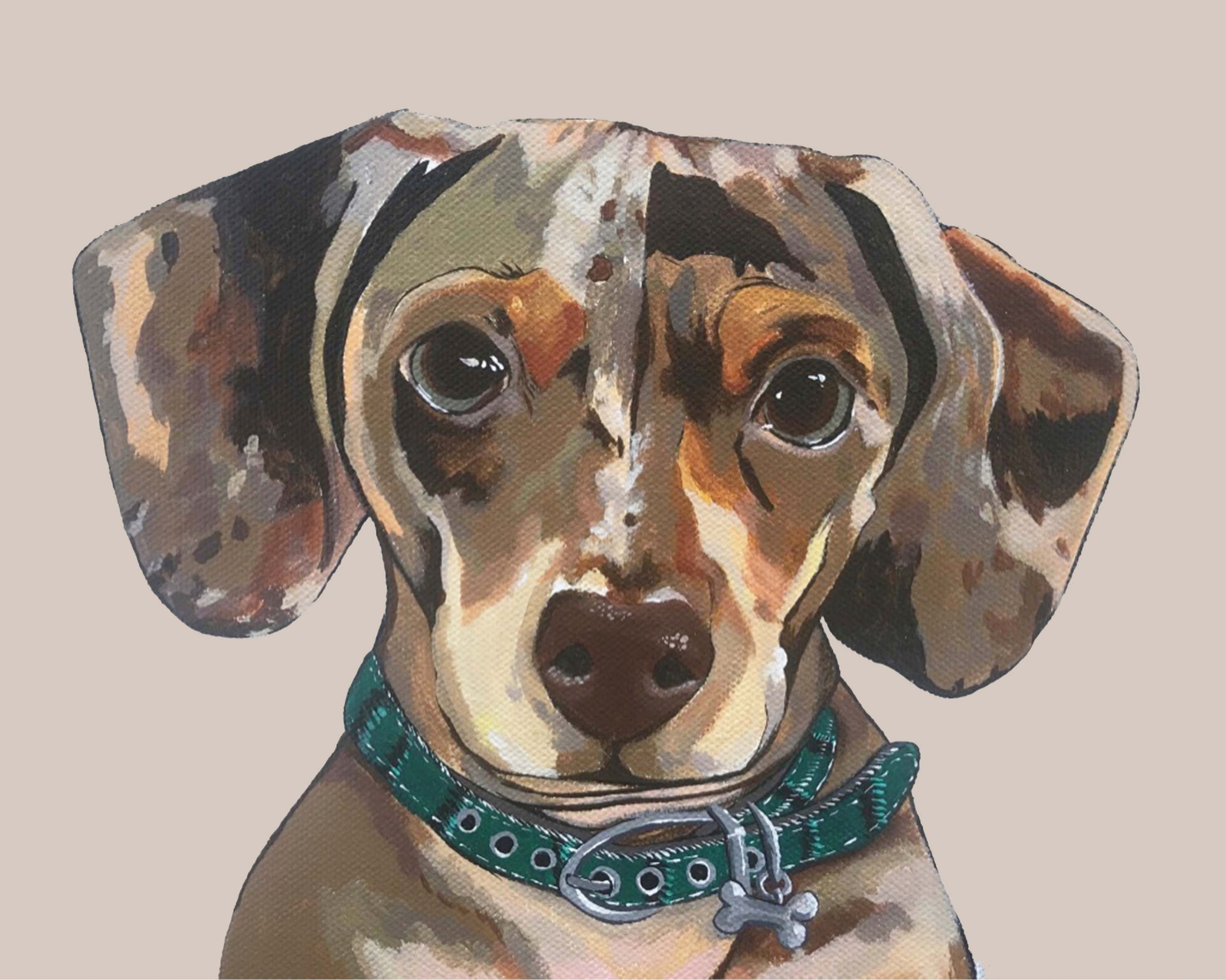 Dog Print - Drake the Dachshund