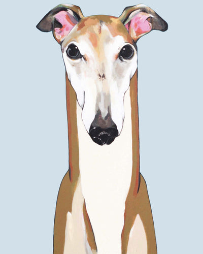 Ron the Greyhound
