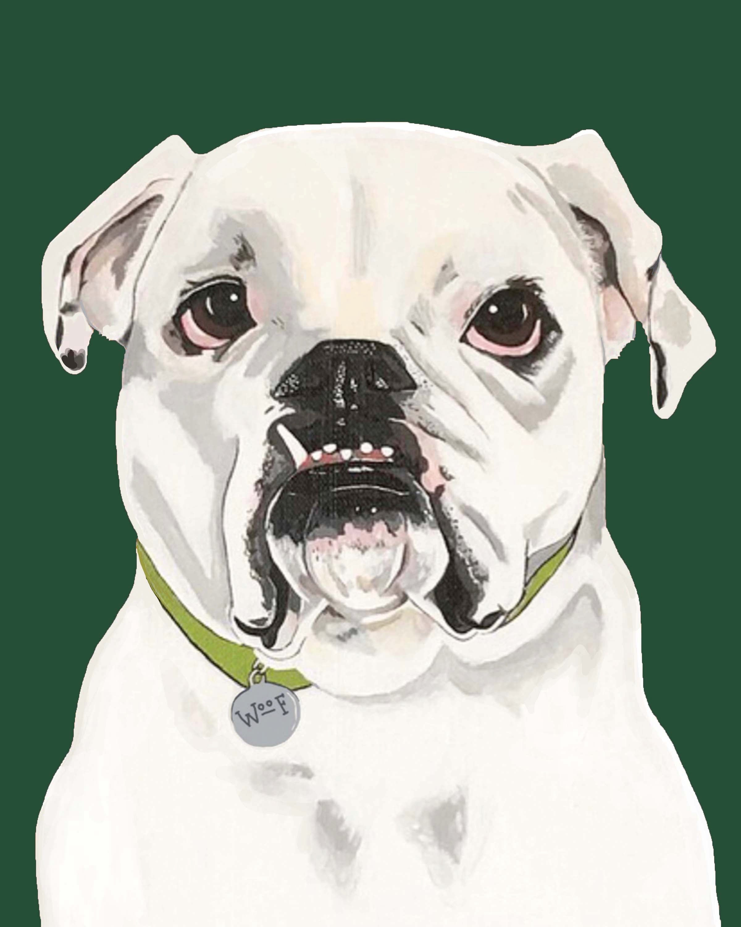 Dog Print - Ed the English Bulldog
