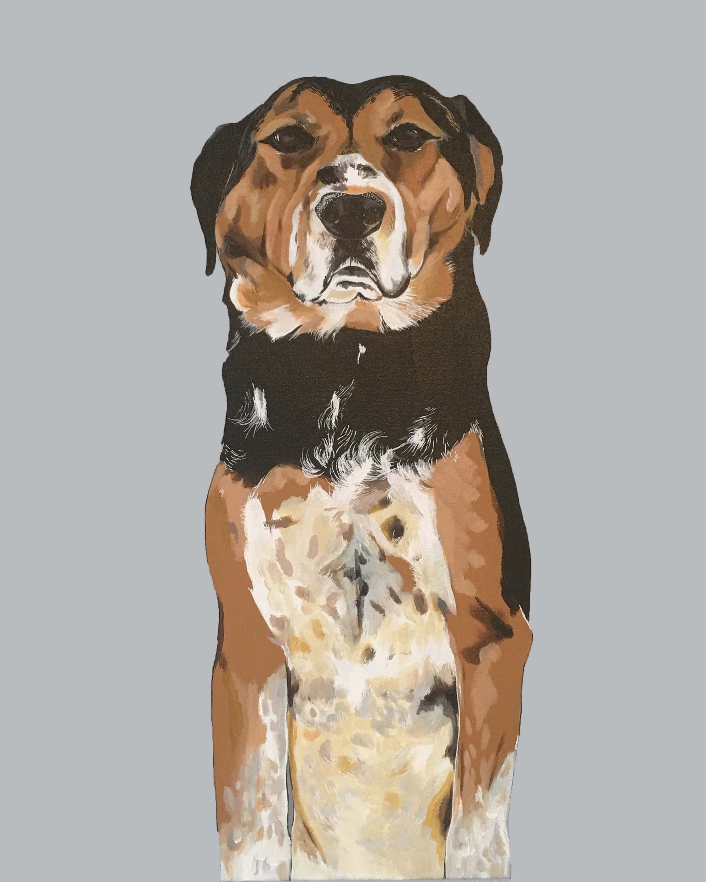 Dog Portrait -  THE FULL BODY