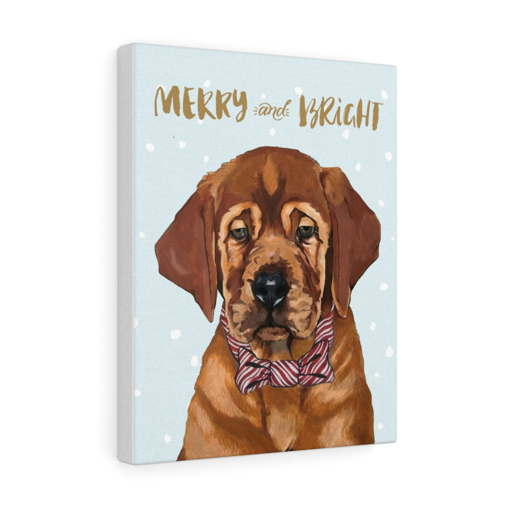 Holiday Pups - Auggie on Canvas Gallery Wrap