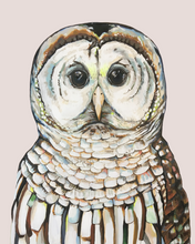 Load image into Gallery viewer, Al the Owl
