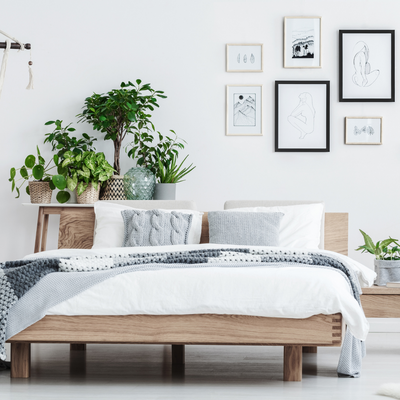 6 Incredible Benefits of Bamboo Bedding