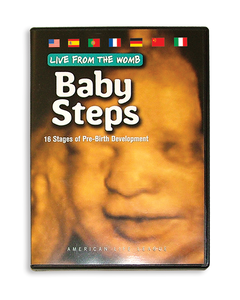 Baby Steps—16 stages of pre-birth development DVD
