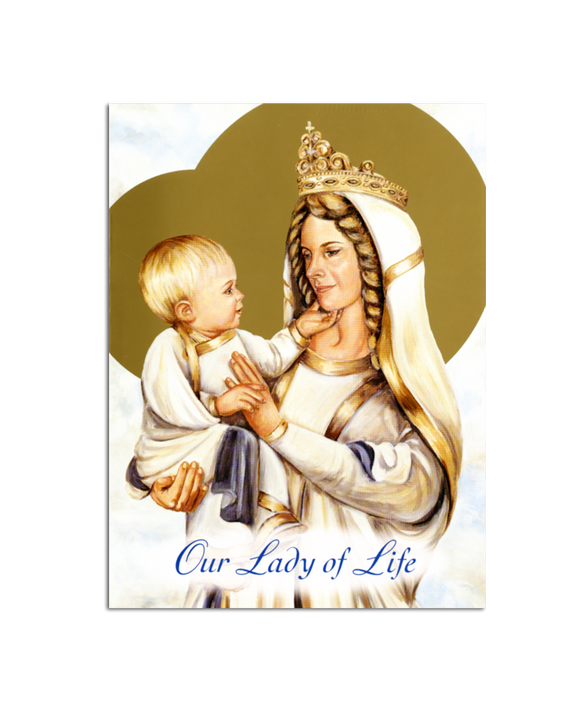 Our Lady of Life Notecards