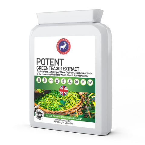 Potent Green Tea 30:1 Extract 12,480mg 90 Capsules