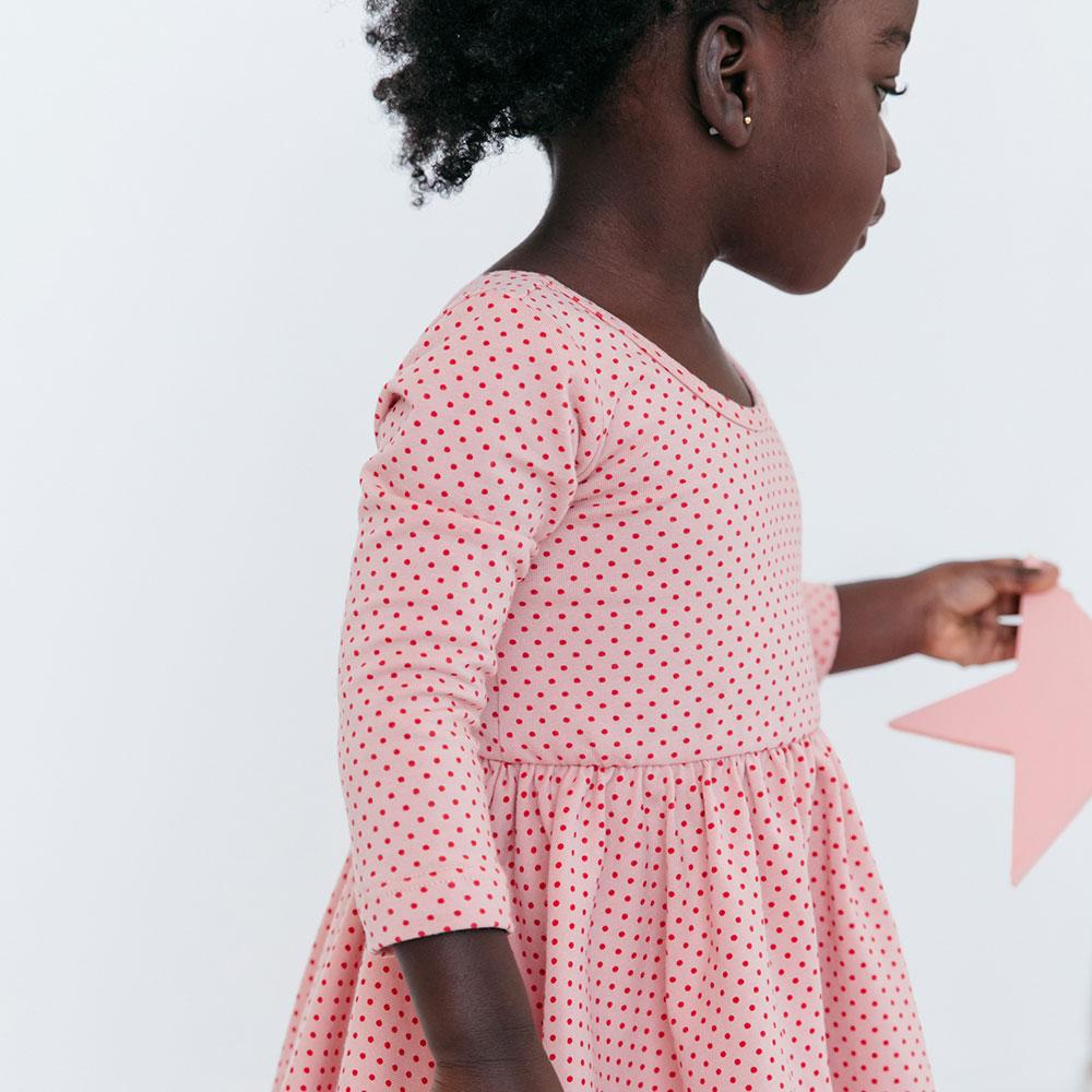 Alice + Ames- THE LONG SLEEVE BALLET DRESS IN Rose Dot