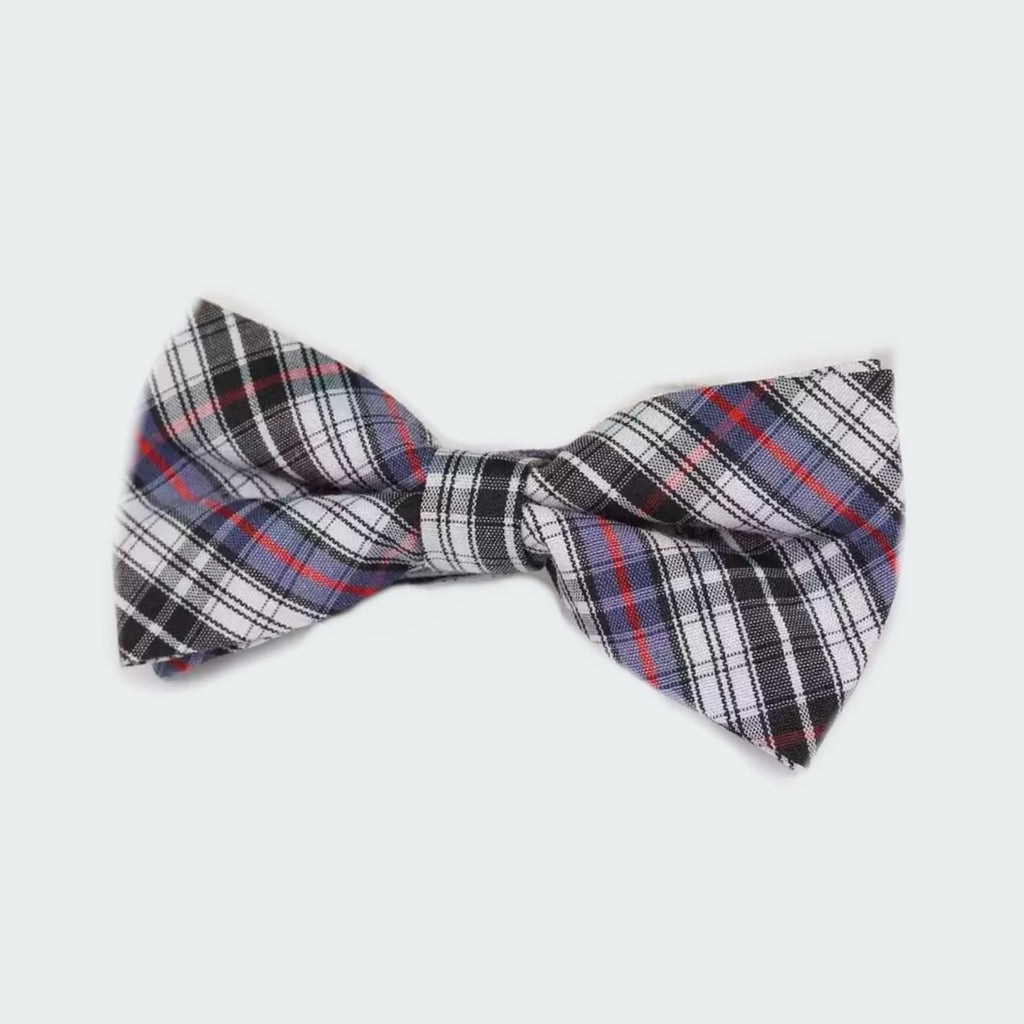 Tiny Trendsetter - Kids Gregory Plaid Bowtie (6 Months - 12 Years)