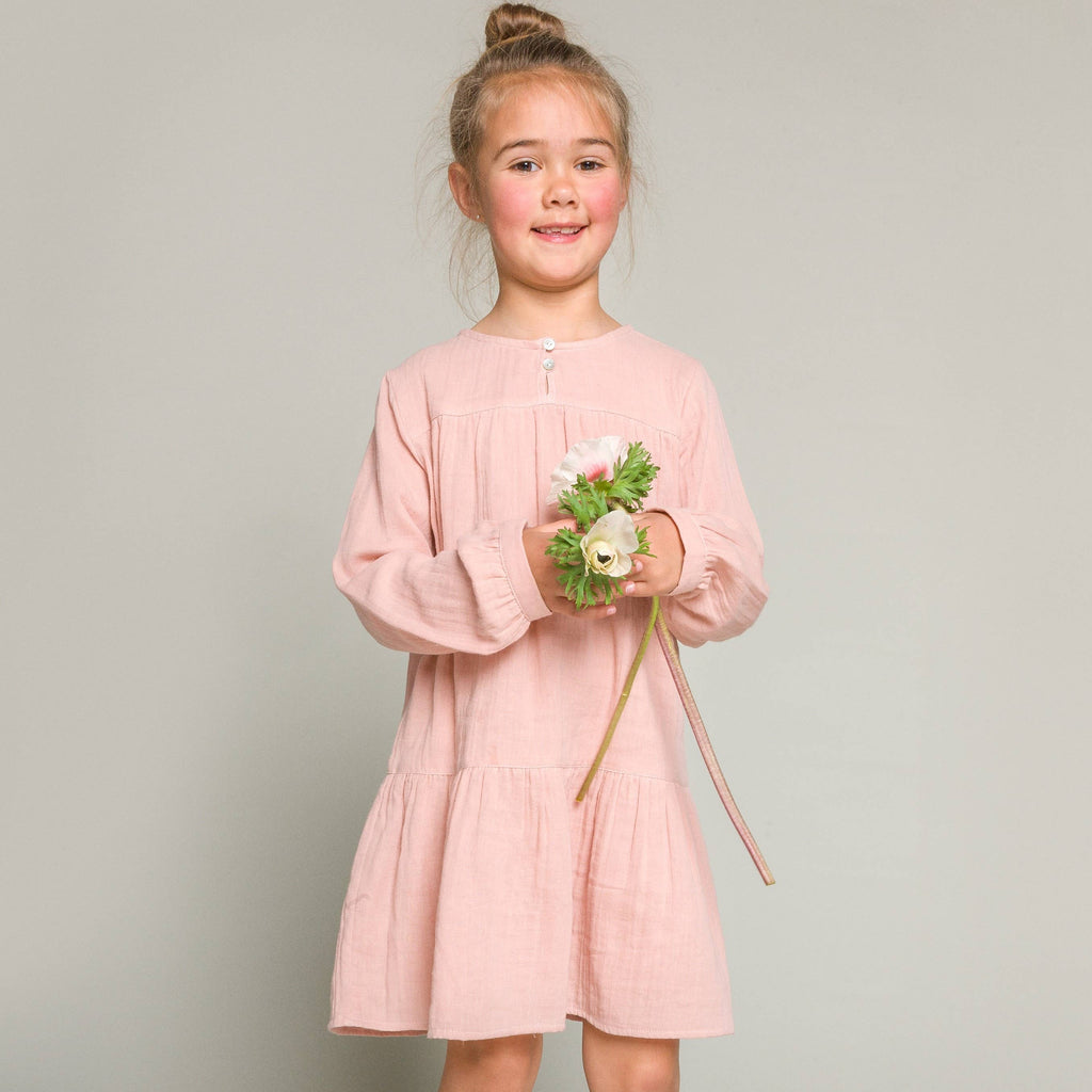 Beet World - Sophie Dress in Rose