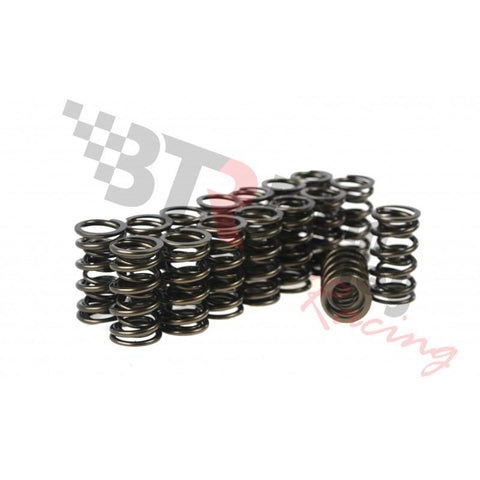 "Brian Tooley Racing BTR .685"" LIFT DUAL SPRING KIT - SP010-16"