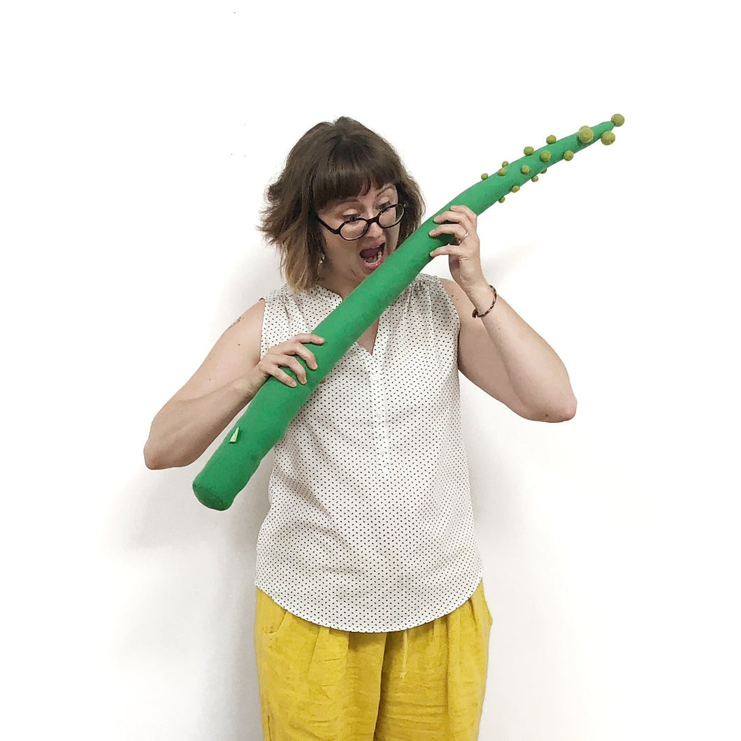 Magic Asparagus Toy