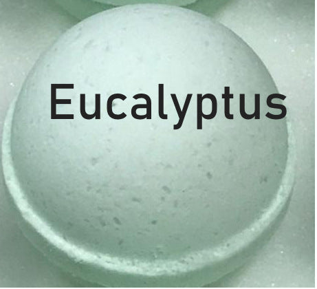 Eucalyptus Shampoo Bomb to  wash locs, braids, 3C and 4C natural hair -
