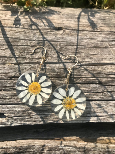 California Daisy Flower Resin Earrings