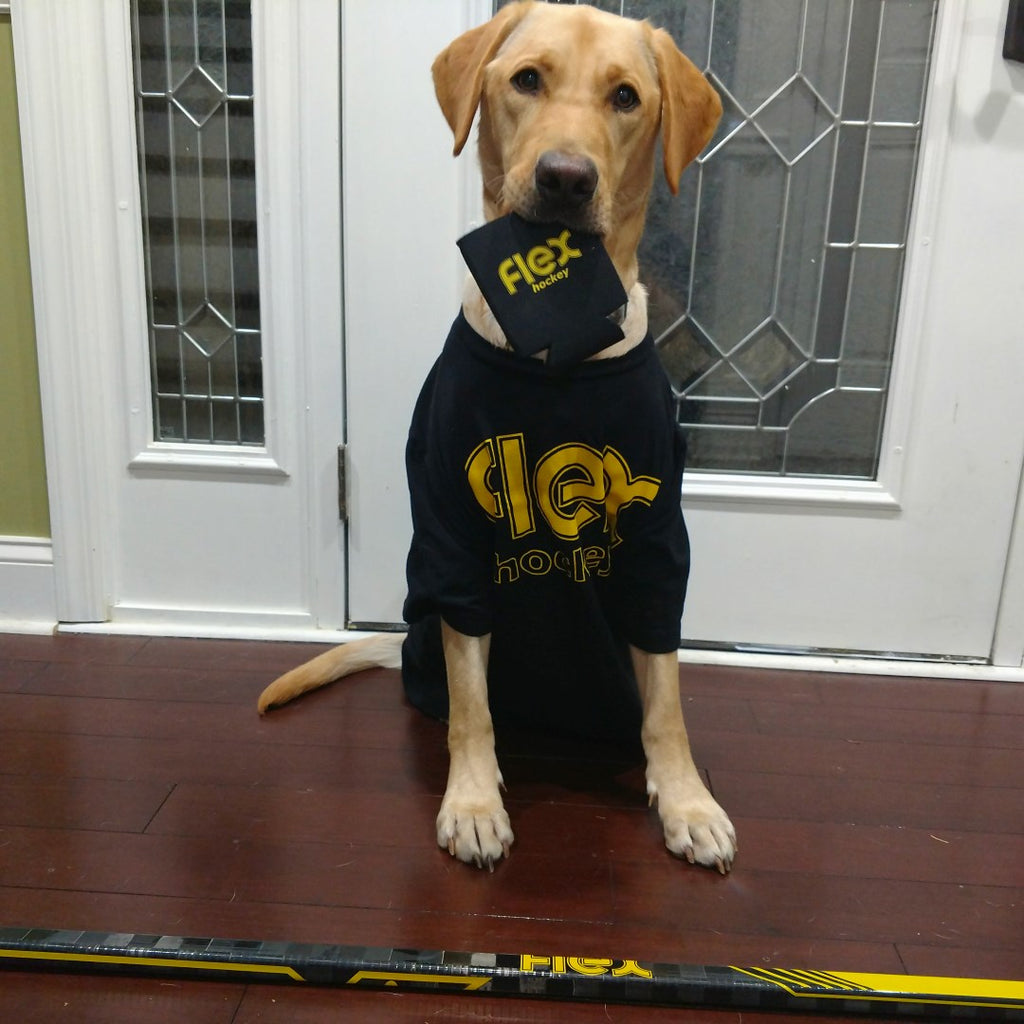 Yellow Lab with Flex Coozie and Hockey Stick