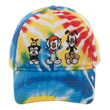 Animaniacs Tye Dye Hat - SPNDER, LLC