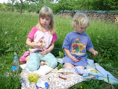 Children playing picnic