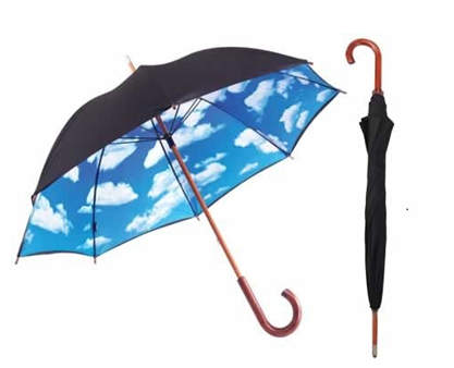 Long black rain umbrella