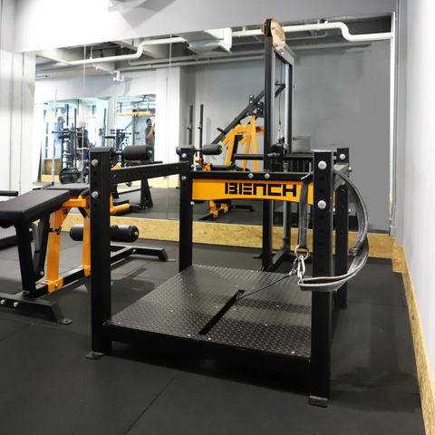 Cable Belt Squat - Bench Fitness Equipment
