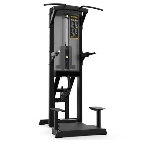 FREEMOTION DIP-CHIN ASSIST ES812 - Bench Fitness Equipment