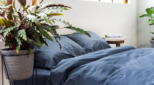 Best plants for better sleep