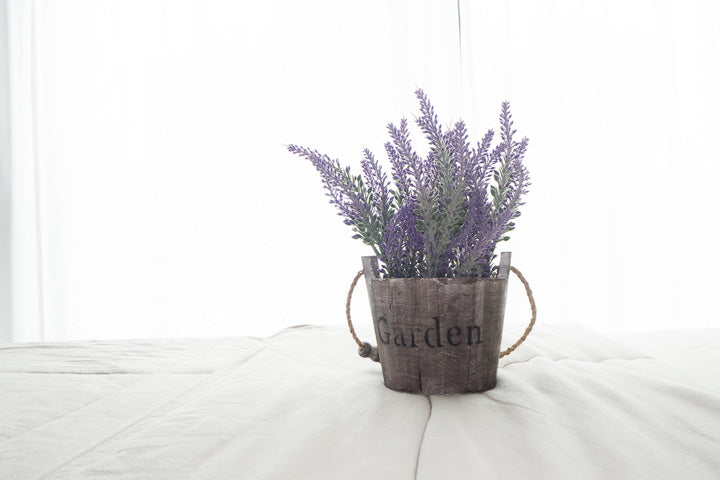 Lavender helps you sleep