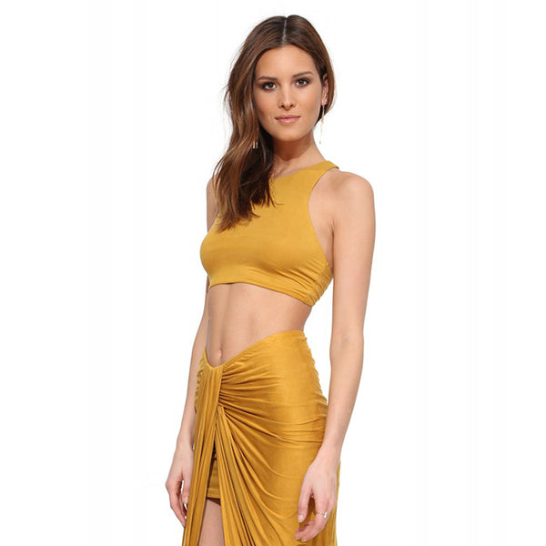 Solid Colour Basic Halter Neck Crop Top - Legit Chic