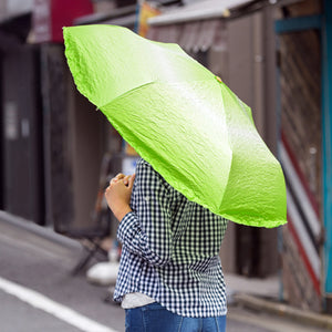 Lettuce Umbrella EBI Vegetabrella
