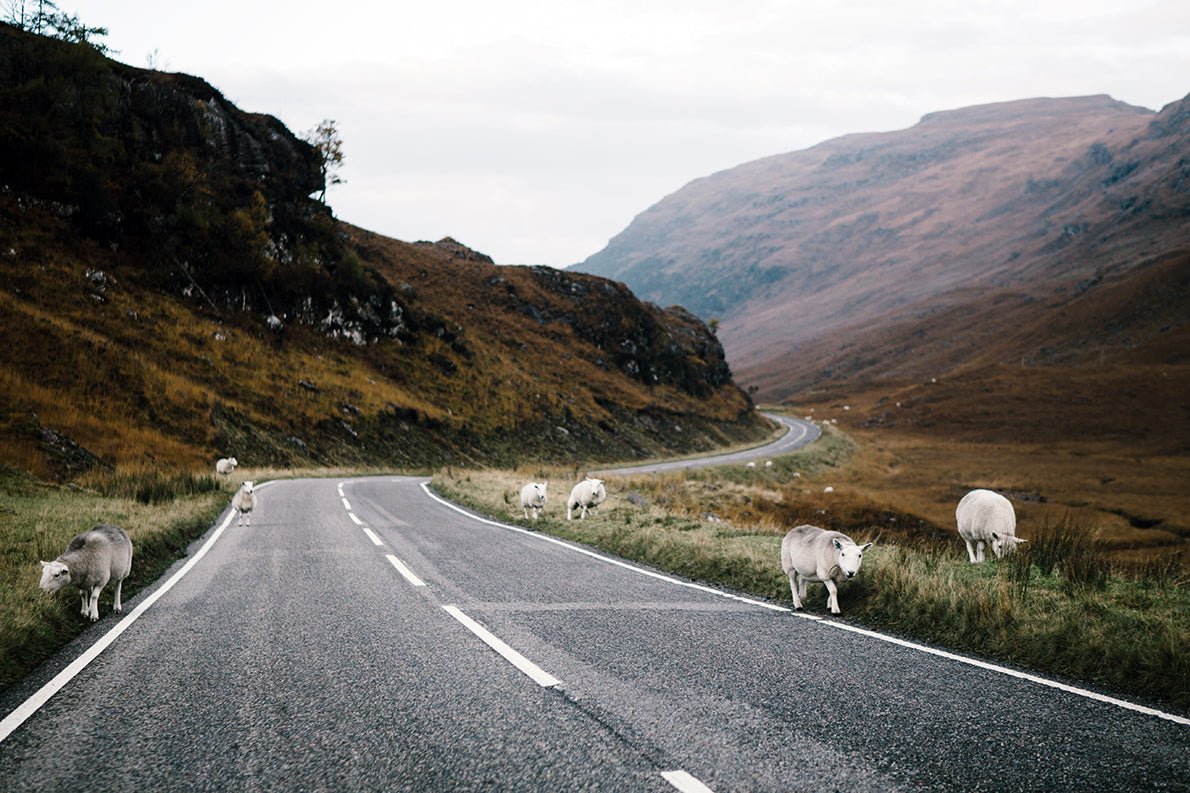 Ride Scotland's Romantic Highlands