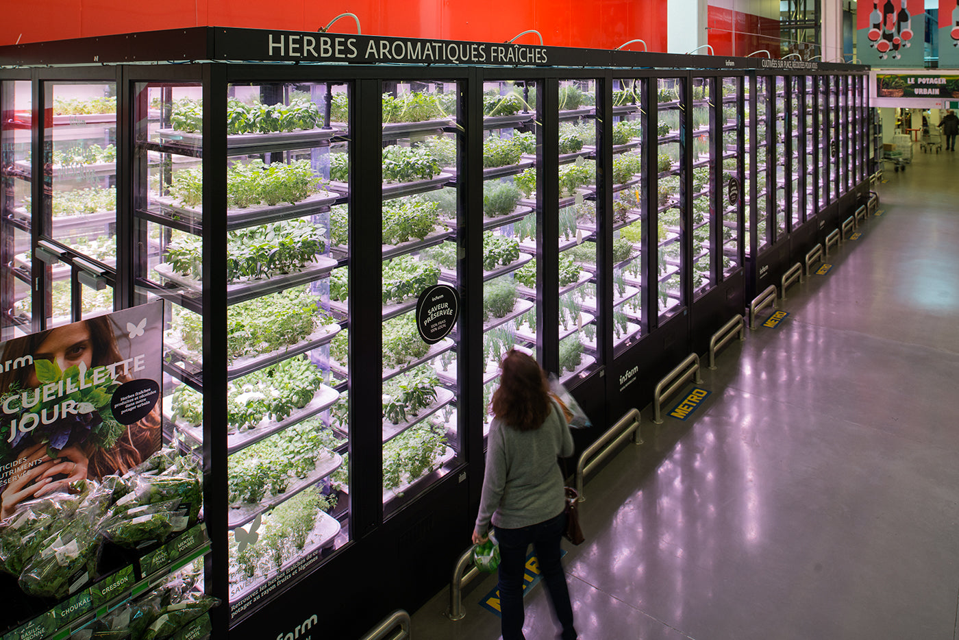 A Vertical Farm in Berlin Keeps Raising The Bar of Food Production