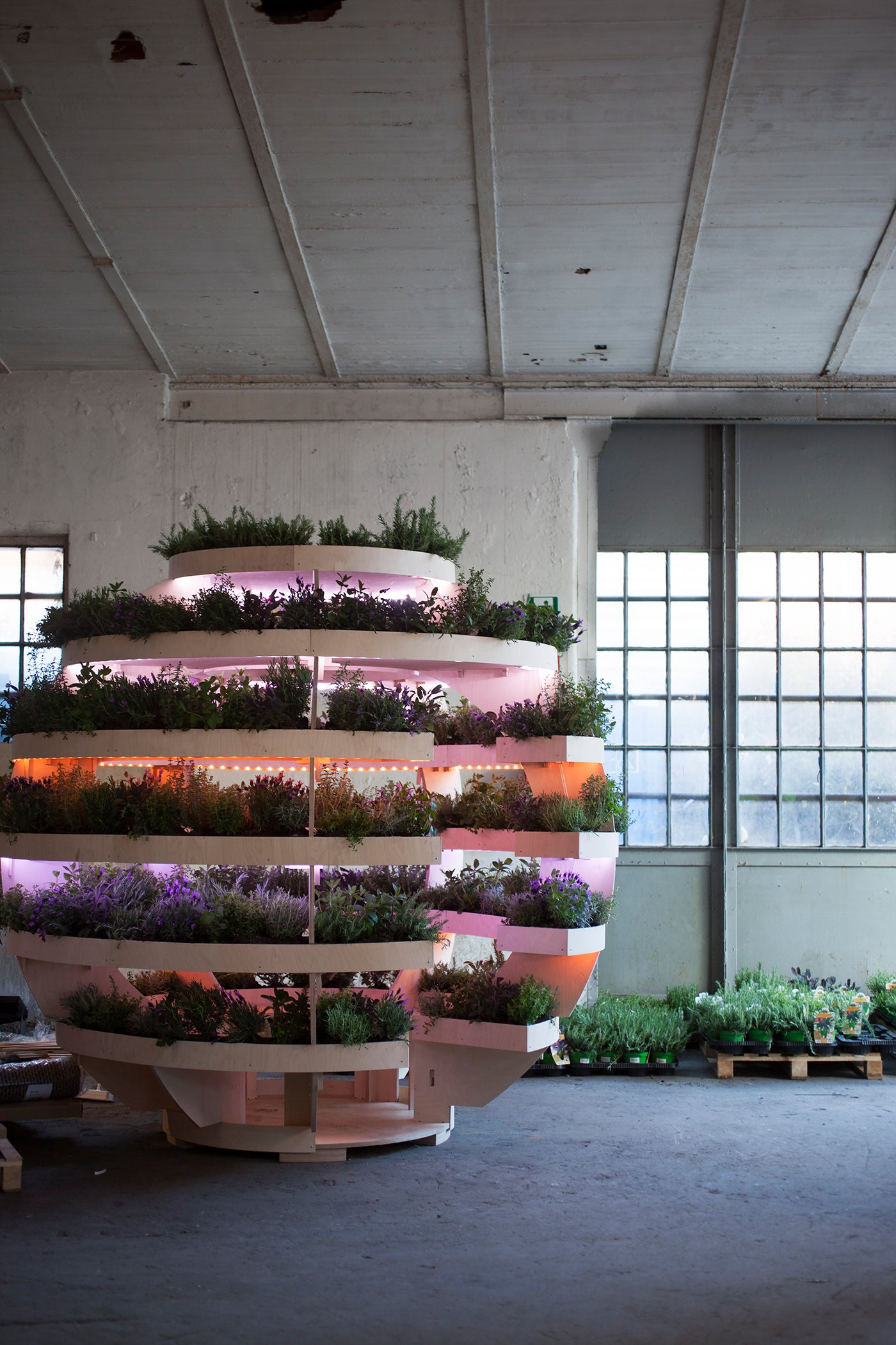 The Growroom by Space10. Photo: Alicia Sjöström_