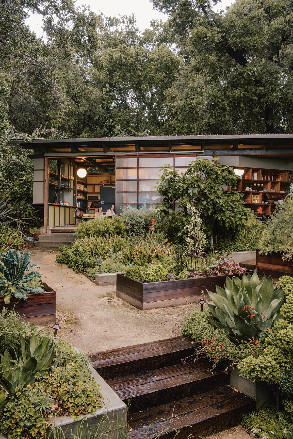 A Mid-Century Home Garden Finds Its Wild Roots