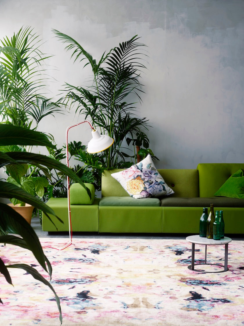 Palm trees and fig tree arranged around a couch in a living room interior. (Photo: Siren Lauvdal)