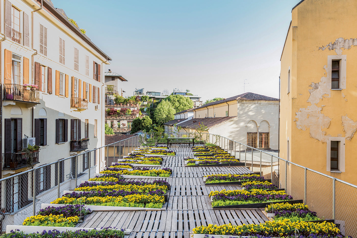 A Rooftop Garden Grows A Community in Milan