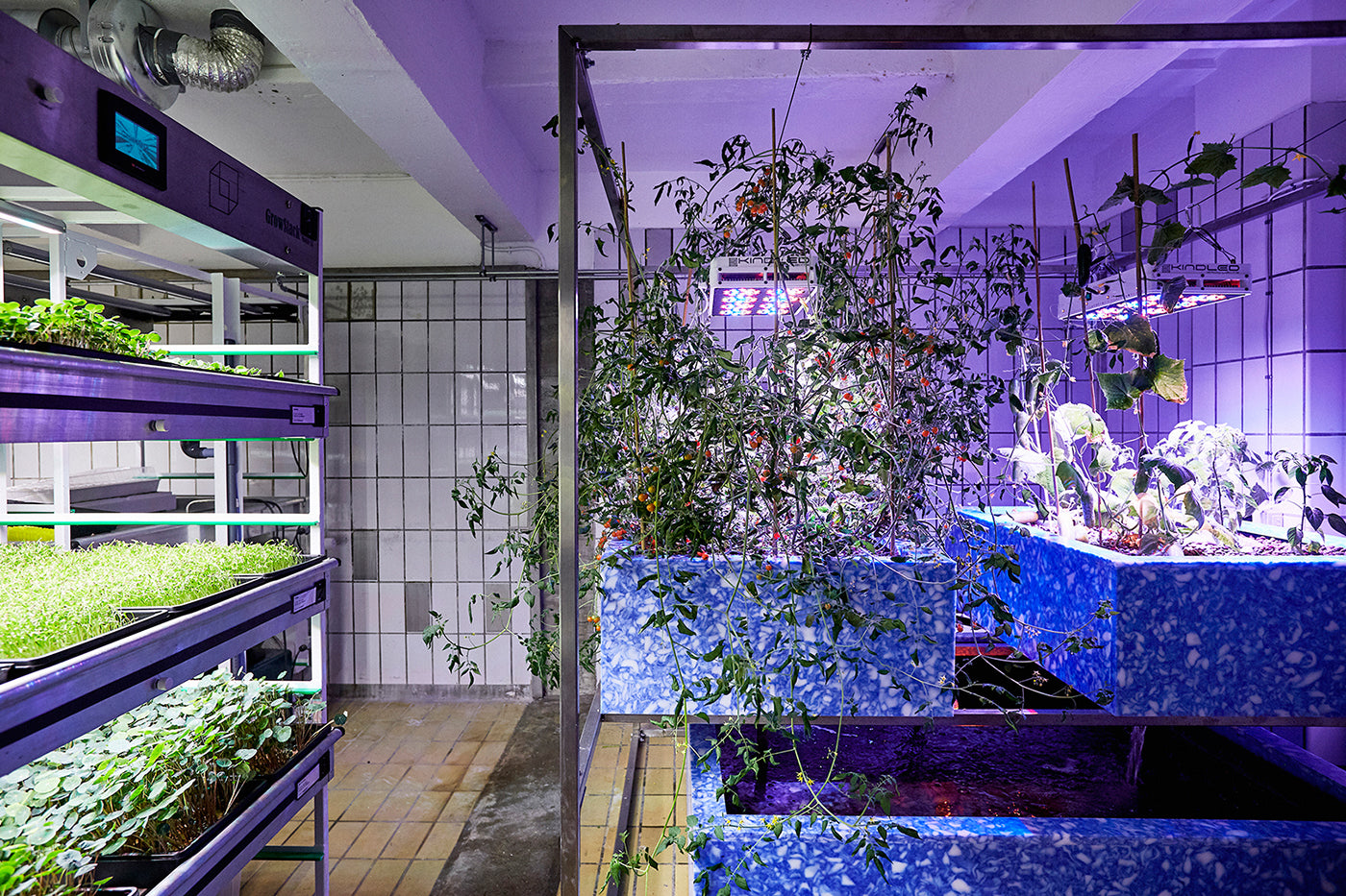 Urban farming by Space10
