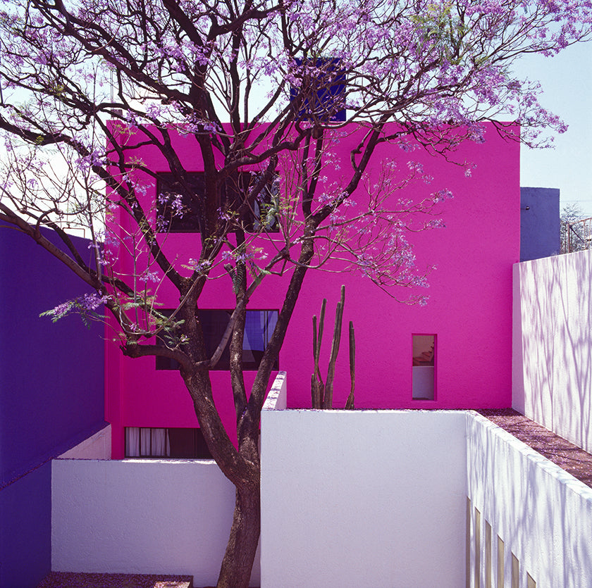 Luis Barragán's Spiritual Spaces of Serenity
