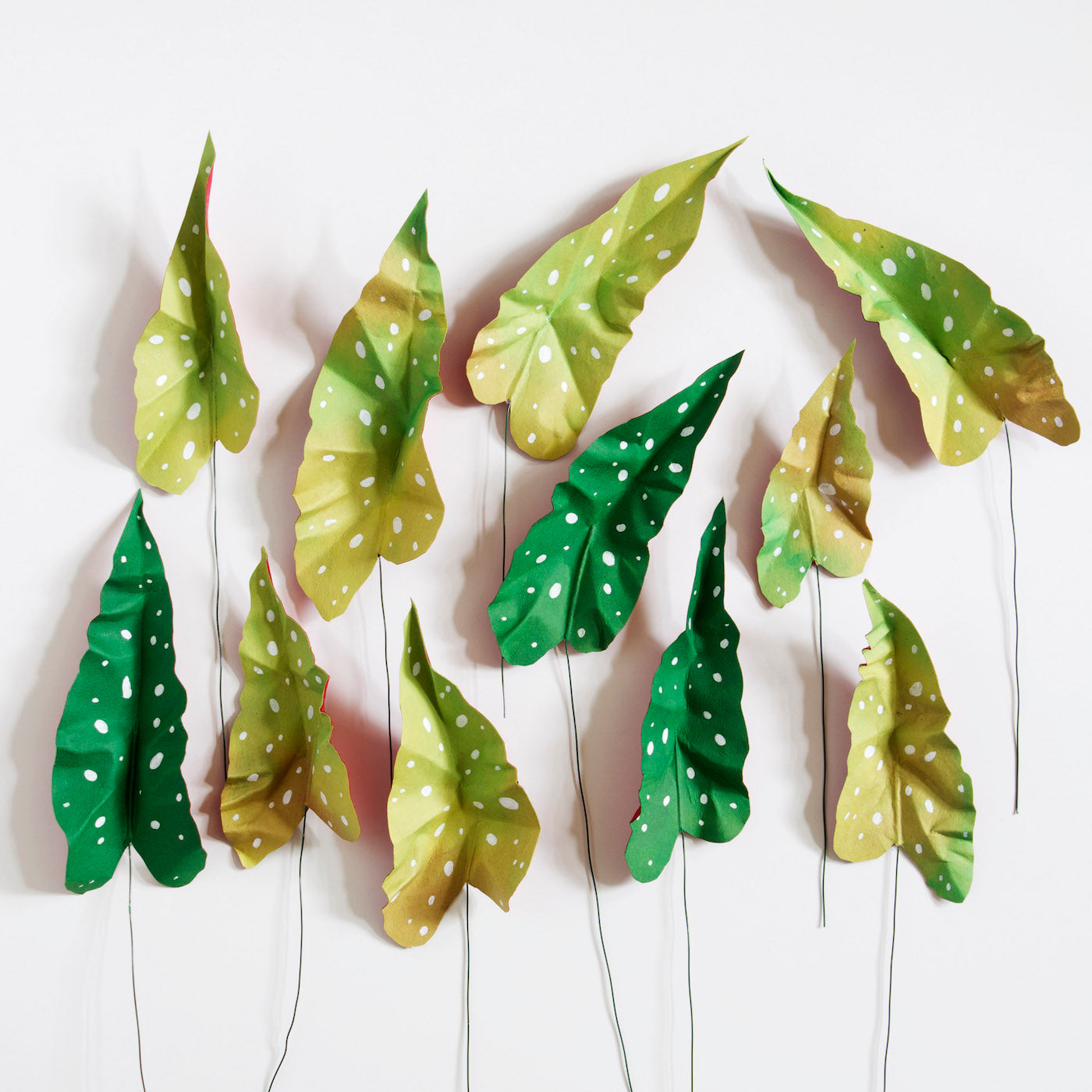 Crafted Plants by Corrie Beth Hogg